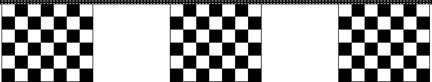 30' Black & White Checkered Flags