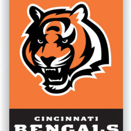Cincinnati Bengals | 2-Sided 28 X 40 House Banner