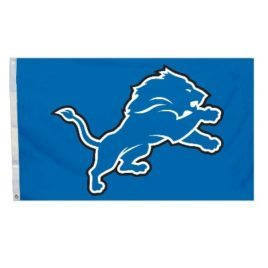 Detroit Lions | 3 Ft. X 5 Ft. Flag W/Grommetts
