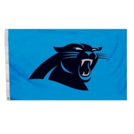 Carolina Panthers | 3 Ft. X 5 Ft. Flag W/Grommetts