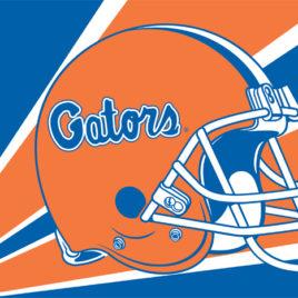 Florida Gators   3 Ft. X 5 Ft. Flag W/Grommets – Helmet Design